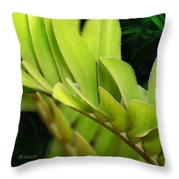 Cardboard Palm Throw Pillow by E B Schmidt