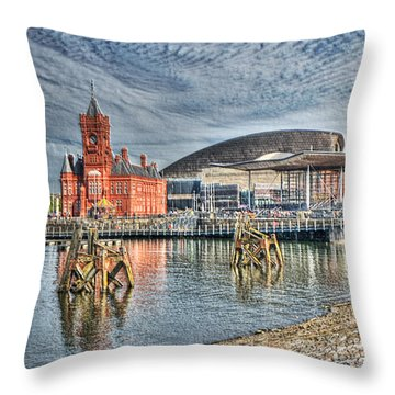 Cardiff Bay Textured Throw Pillow by Steve Purnell