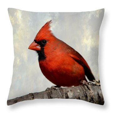 Cardinal 3 Throw Pillow