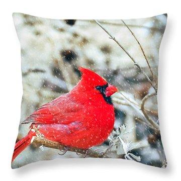 Cardinal Bird Christmas Card Throw Pillow