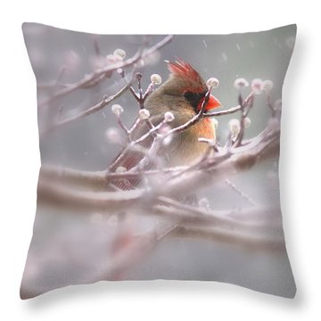 Cardinal - Bird - Lady In The Rain Throw Pillow by Travis Truelove