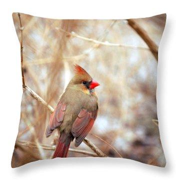 Cardinal Birds Female Throw Pillow