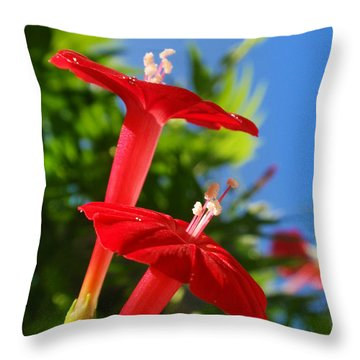Cardinal Climber Flowers Throw Pillow by Christina Rollo