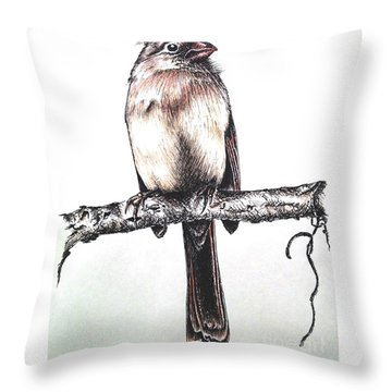 Cardinal Female Throw Pillow