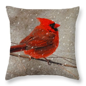 Cardinal In Snow Throw Pillow