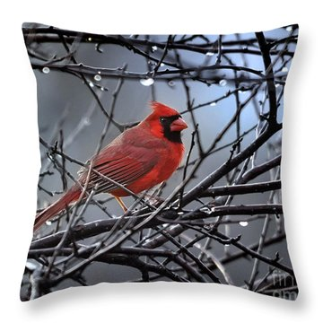 Cardinal In The Rain   Throw Pillow
