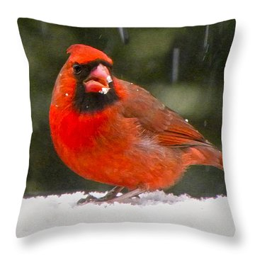 Cardinal In The Snowstorm Throw Pillow