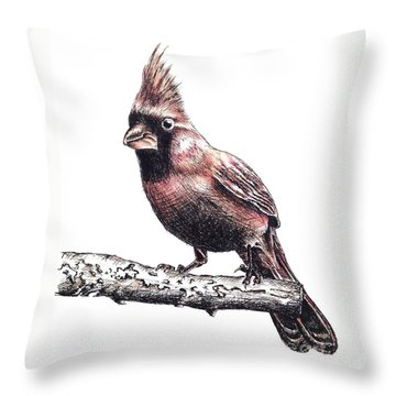 Cardinal Male Throw Pillow