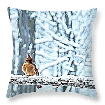 Cardinal No Mate To Keep Warm Throw Pillow by Randall Branham