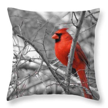 Cardinal Of Hope 002sc Throw Pillow
