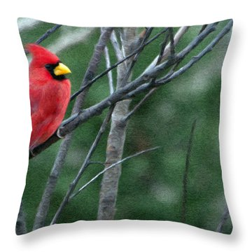 Cardinal West Throw Pillow