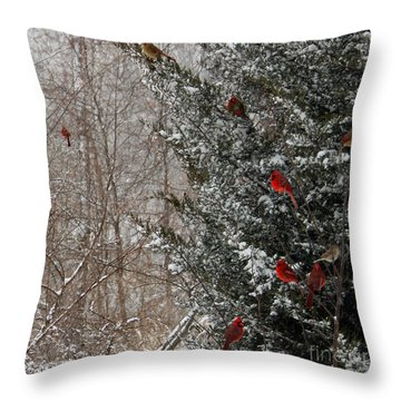Cardinals In Winter 1 Square Throw Pillow