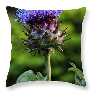 Cardoon Throw Pillow by Chris Flees