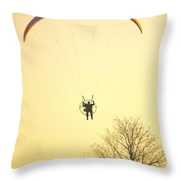 Careful Of That Tree Throw Pillow by Karol Livote