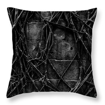Caress Throw Pillow
