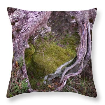 Caressing The Moss Throw Pillow by Gary Slawsky