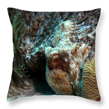 Caribbean Reef Octopus Next To Green Anemone Throw Pillow by Amy McDaniel