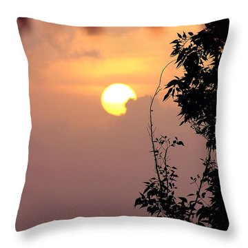 Caribbean Summer Solstice  Throw Pillow