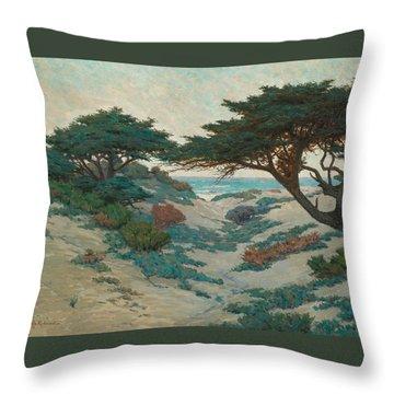 Redmond Throw Pillows