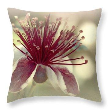 Carmella Throw Pillow by Elaine Teague