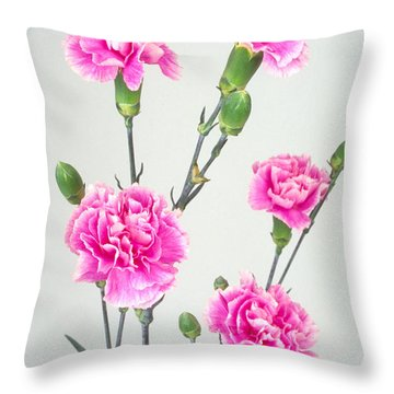 Carnartons Throw Pillow