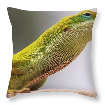 Carolina Anole Throw Pillow by Lorri Crossno