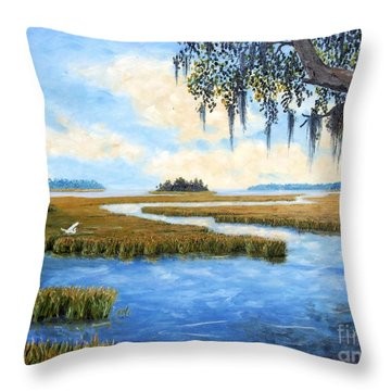Carolina Colors Throw Pillow