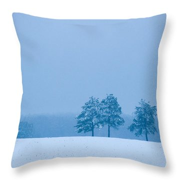 Carolina Snow Throw Pillow