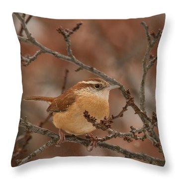 Throw Pillow featuring the photograph Carolina Wren 1 by Lara Ellis