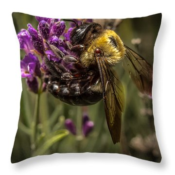 Carpenter Bee On A Lavender Spike Throw Pillow by Ron Pate