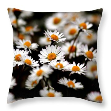 Carpet Of Daisies Throw Pillow