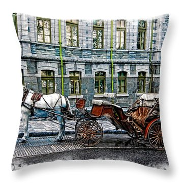 Carriage Rides Series 06 Throw Pillow