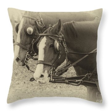 Carriage Horses I Throw Pillow