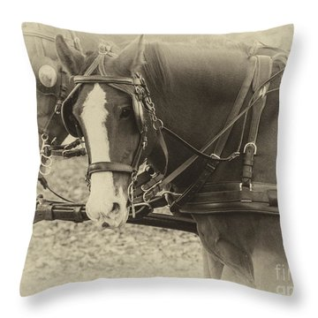Carriage Horses II Throw Pillow