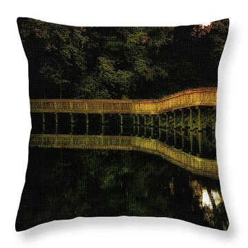 Throw Pillow featuring the photograph Carry Me Back In Time by Ola Allen