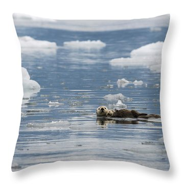 Carry Me Throw Pillow by Ted Raynor