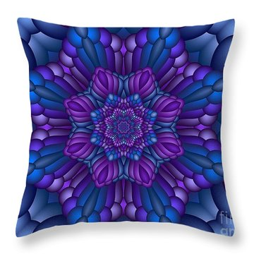 Cartesian  6  Throw Pillow