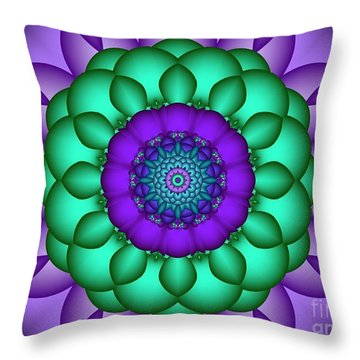 Cartesian  8 Throw Pillow