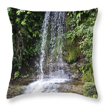 Cascada Pequena Throw Pillow