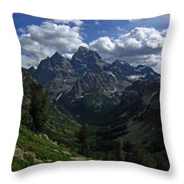 Cascade Canyon North Fork Throw Pillow by Raymond Salani III