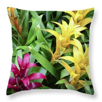 Cascade Garden Throw Pillow