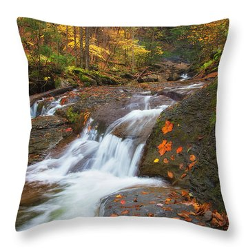 Cascade In The Glen Throw Pillow