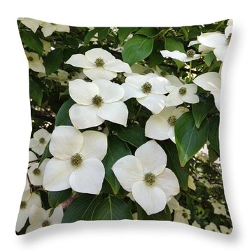 Cascade Throw Pillow by Jean Goodwin Brooks