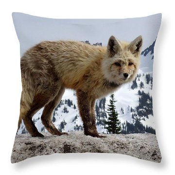 Cascade Red Fox 1 Throw Pillow