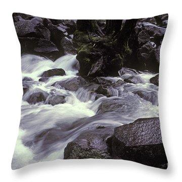 Cascade Throw Pillow by Ron Sanford