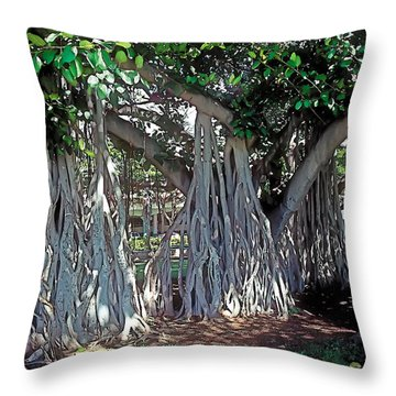 Cascade Throw Pillow by Terry Reynoldson
