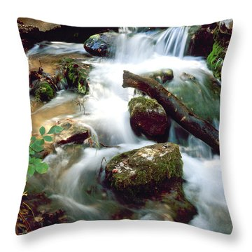 Cascades In Roman Nose State Park Throw Pillow