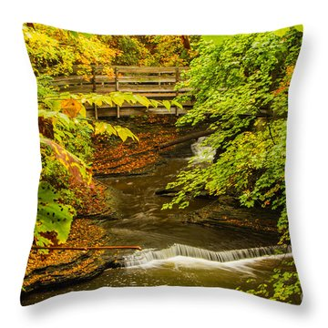 Cascadilla Gorge Cornell University Throw Pillow