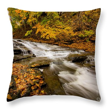 Cascadilla Gorge Trail Throw Pillow