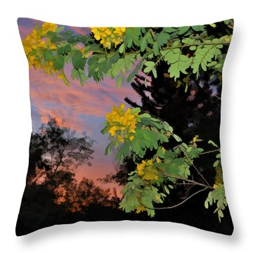 Casia Sunrise Throw Pillow